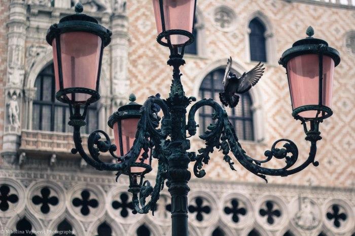 Venice Edits-26