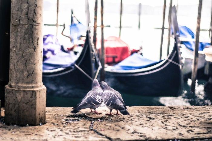 Venice Edits-31